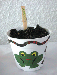 Homemade container garden; potted plant; Earth Day arts and crafts