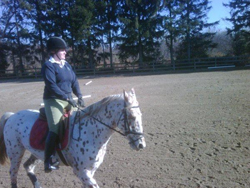 Greenlawn Equestrian Center, horseback riding lessons, huntseat rider