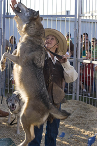 Wolves of the World show; show wolves; circus act