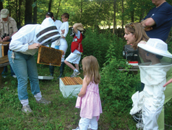 beekeeper; honey bee hive; kids