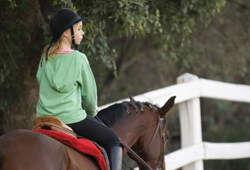 Greenlawn Equestrian Center, horseback riding lessons in Greenlawn, NY, Long Island