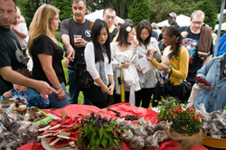 Chile Pepper Fiesta at Brooklyn Botanic Garden