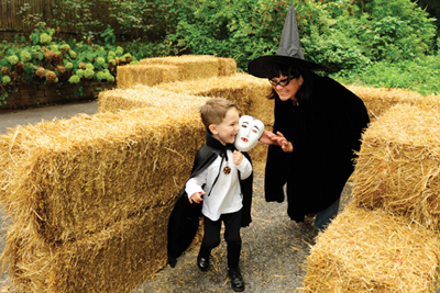Halloween hay maze; Boo at the Zoo at Bronx Zoo