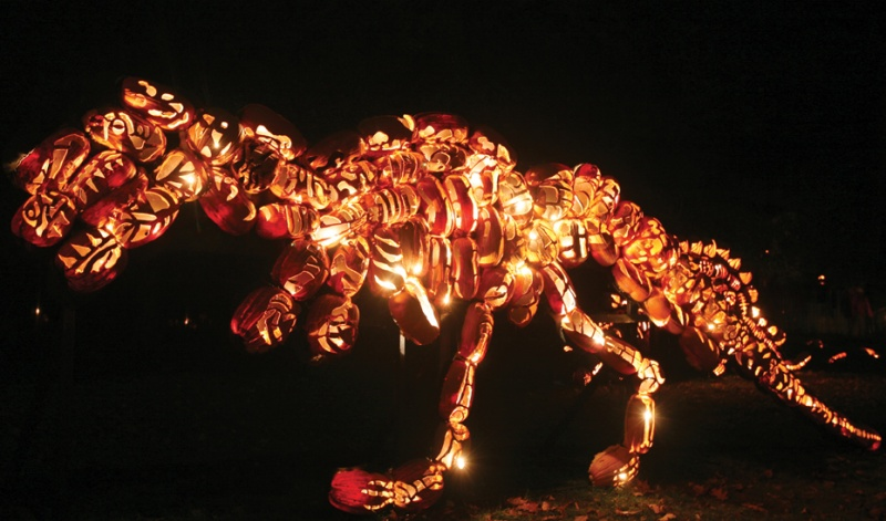 T-rex at Great Jack O Lantern Blaze