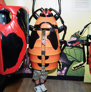 Staten Island Children's museum bugs exhibit; bugs and other insects museum exhibit