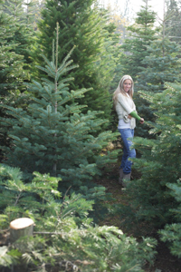 Evergreen tree forest; woman among pine trees