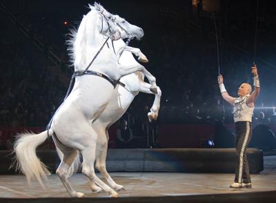 Tabayara Maluenda, Ringling Bros. circus
