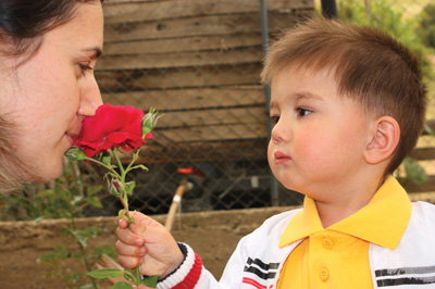 little boy giving mother a flower