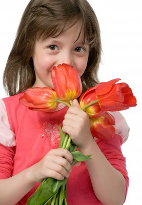 little girl smells tulips; cultivate good smells