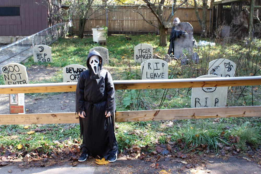 Halloween at Beardsley Zoo