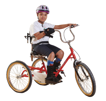 triaid tricycle