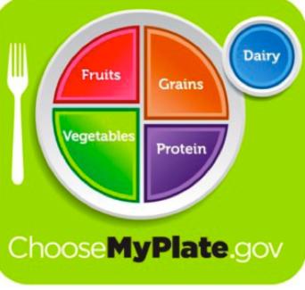 My Plate USDA