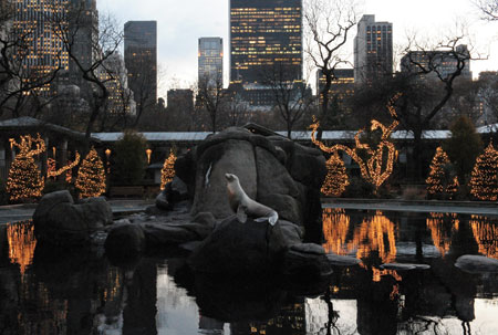 Winterfest at the Central Park Zoo