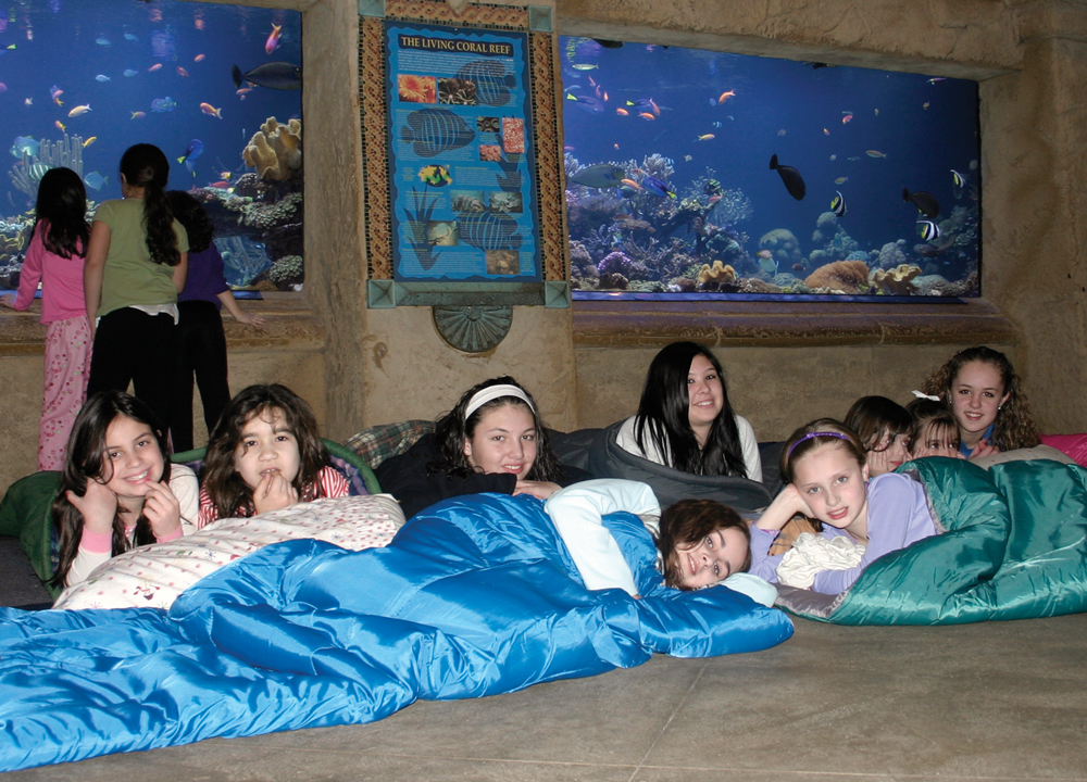 sleepover at maritime aquarium