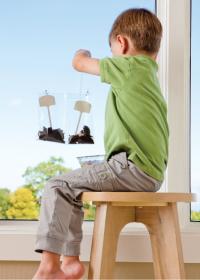 Boy Planting Seeds