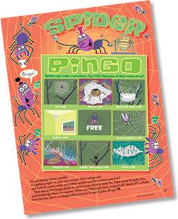 Spider Bingo