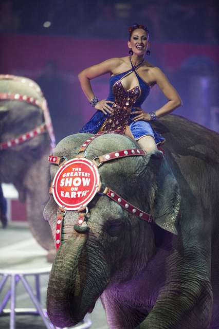 circus performer on an elephant