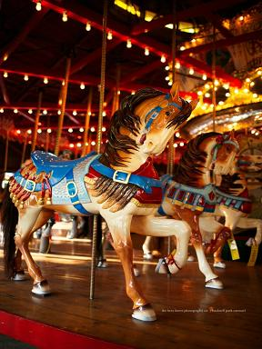 bushnell park carousel in hartford ct
