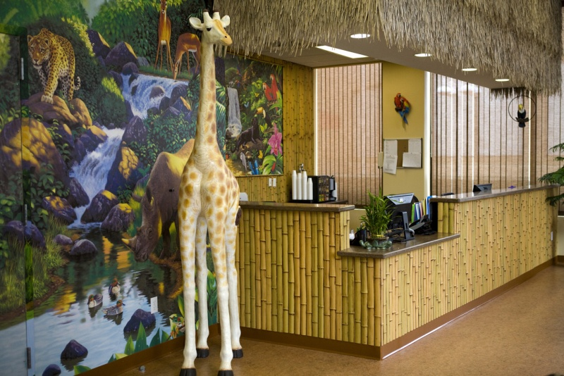 jungle themed PM Pediatrics in Bayside
