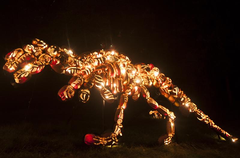 great jack o lantern blaze in westchester ny