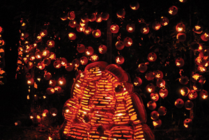Great Jack O Lantern Blaze in Westchester