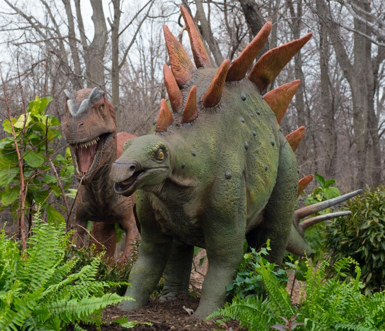 Bronx-zoo-stegosaurus