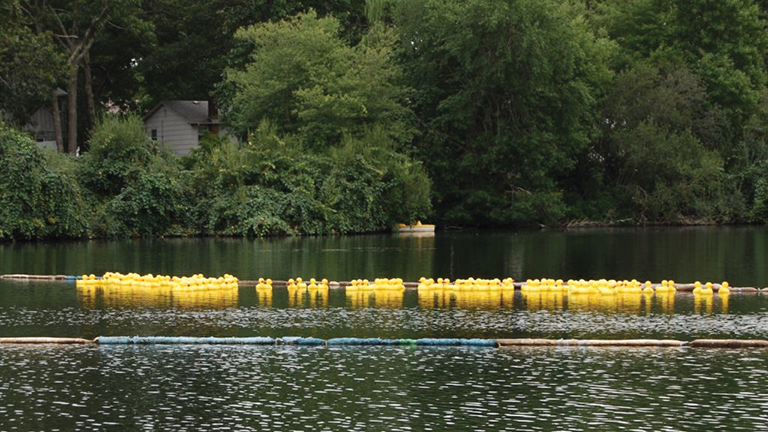 one million dollar duck race
