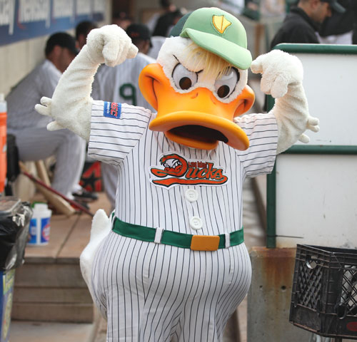 Long Island Ducks mascot